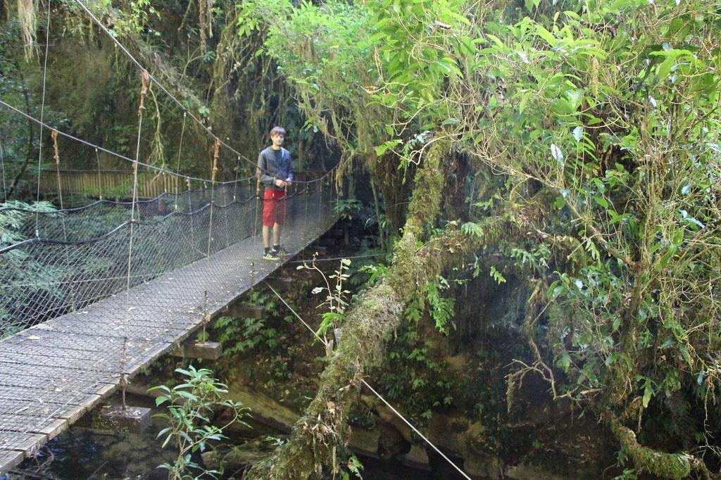 auf dem Weg zur Mangapohue Bridge