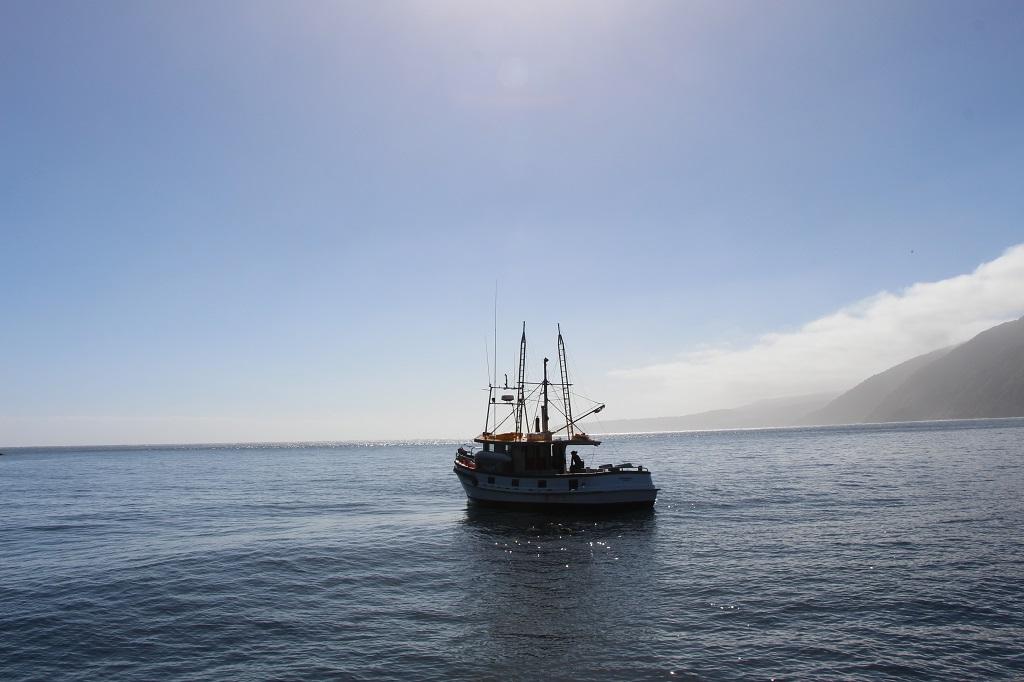 Fahrt zur Tasmansee
